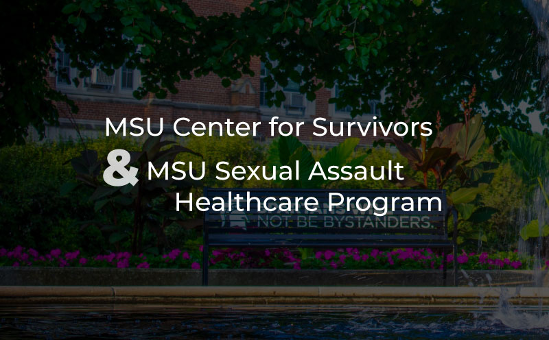 Michigan State University Center for Survivors of Sexual Assault Healthcare Program title image with bench near water fountain