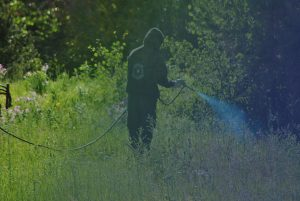 man-spraying-weedkiller