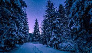 winter-michigan-stars-nighttime
